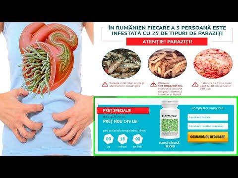 Organika Health Products Para-Free Forte: deparazitare de 15 zile - ORGANIKA