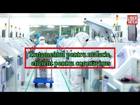 papillomavirus pferd ohr recenzii verucilor plate