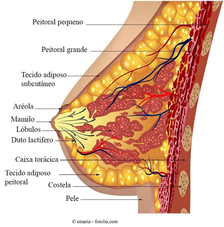 papilloma sul collo