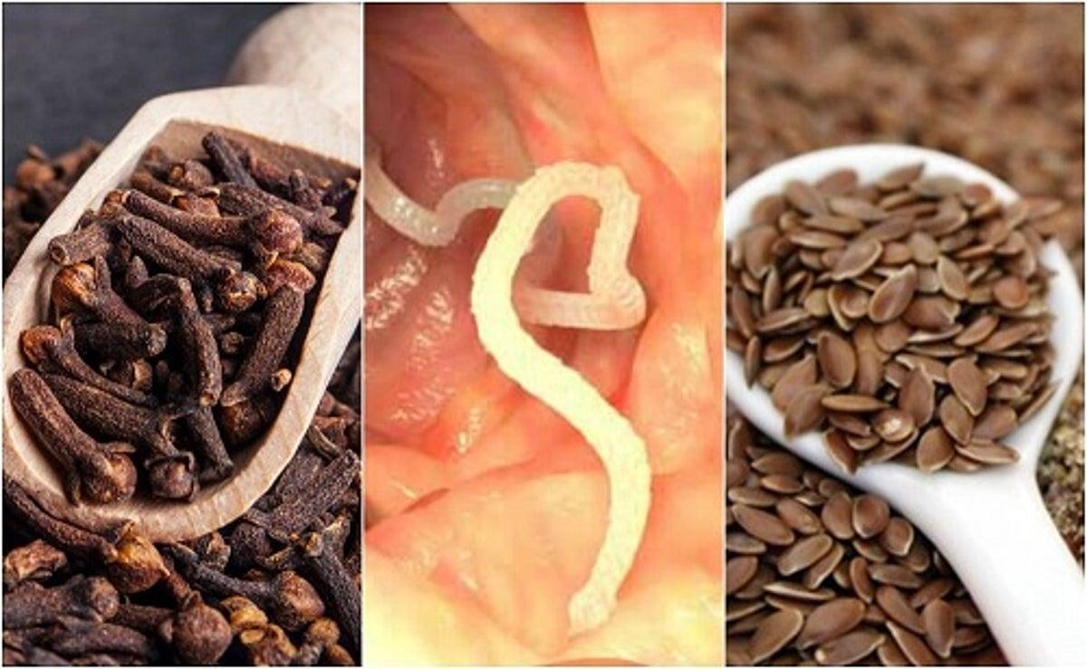 cum să elimini paraziții din tractul digestiv