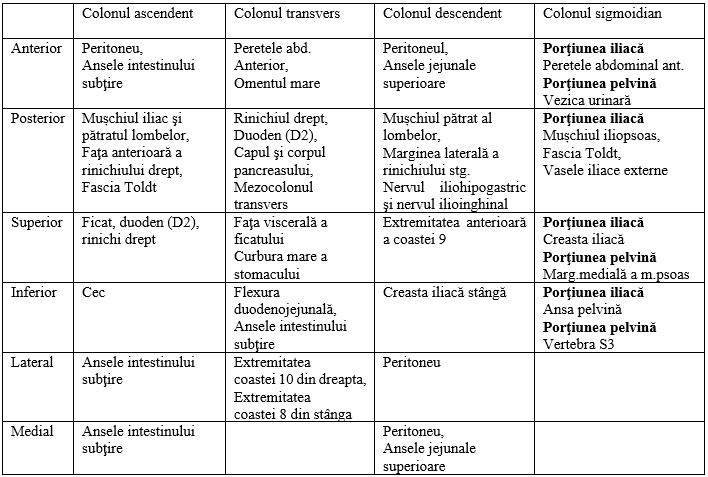 teniile intestinului gros