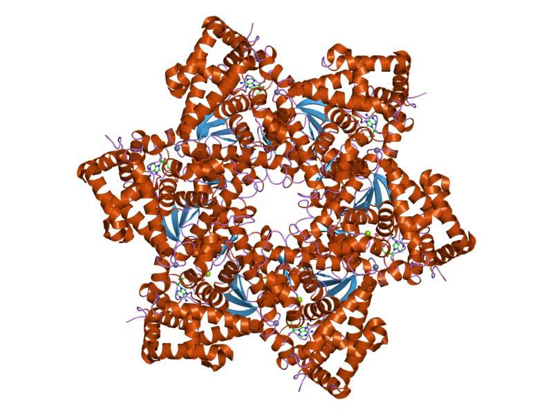cât funcționează pastilele de vierme