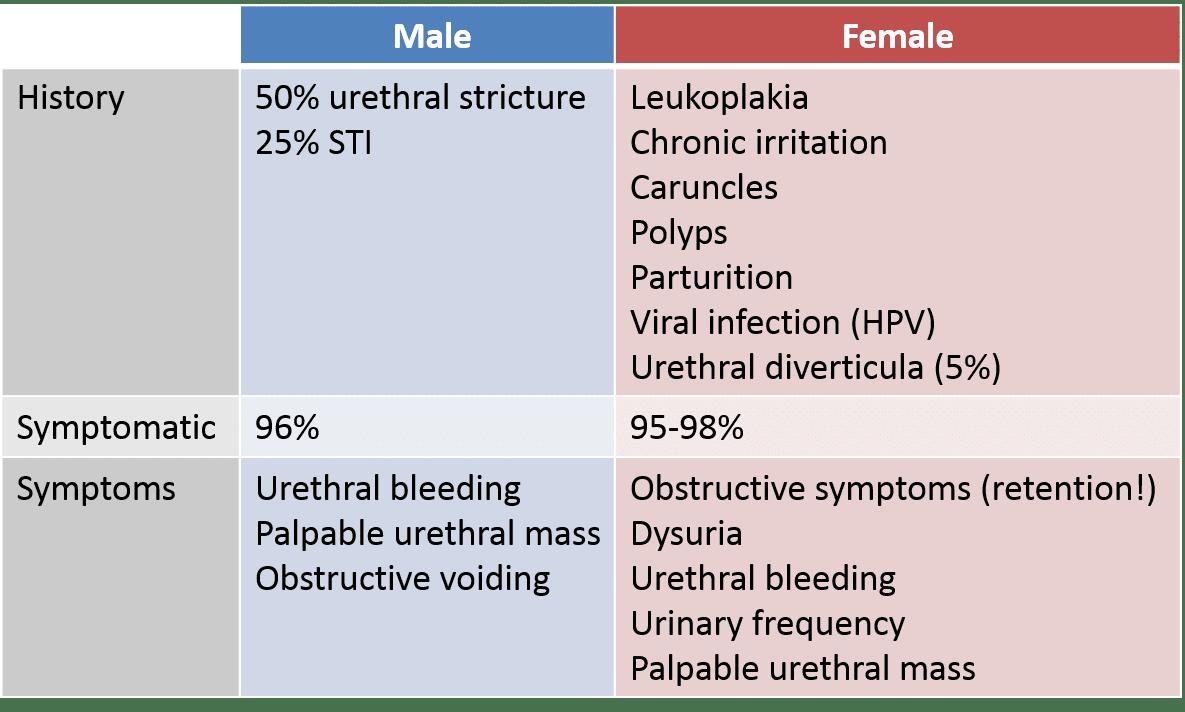 hpv urethral cancer primii negi