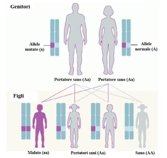 hpv papillomavirus tratament