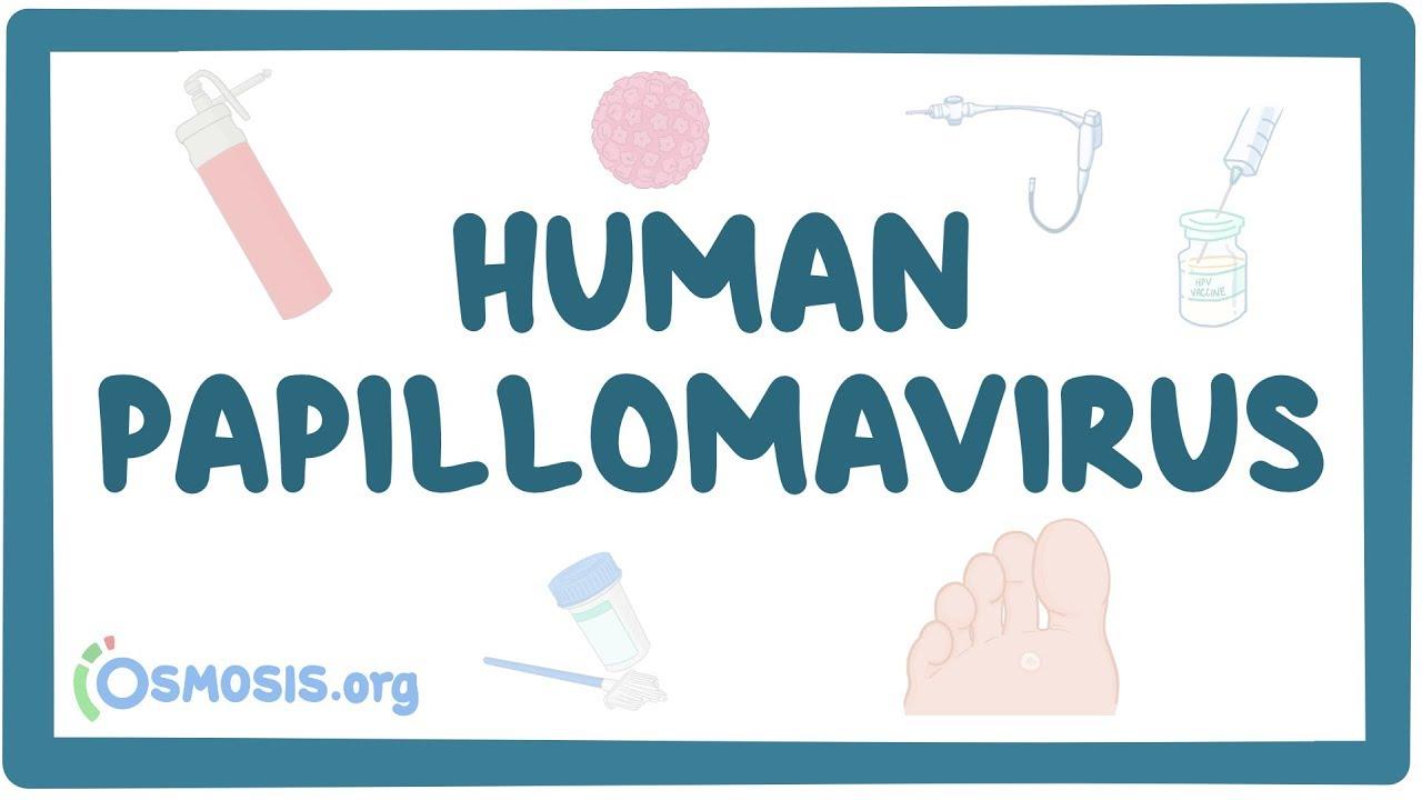 ce este papilomavirus uman periculos