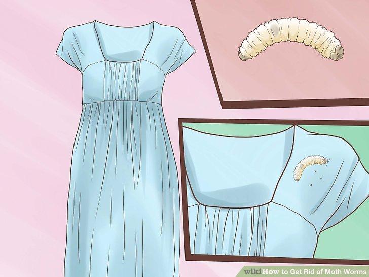 reaparitia cauzei condilomului negi genitale pe mamelon