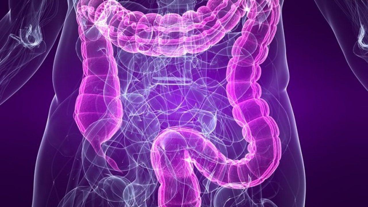 imagini de curățare a colonului de paraziți cancer la gat la copii simptome