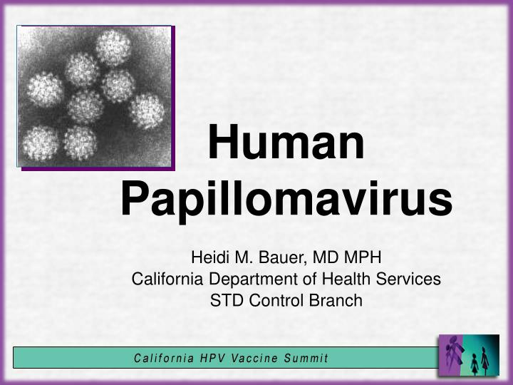 papillon zeugma belek turkey genital warts without hpv virus