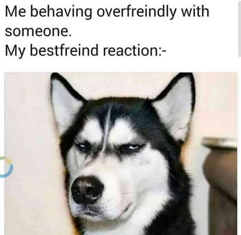 Viermi Husky cum să tratezi ce cauzează negi pe braț