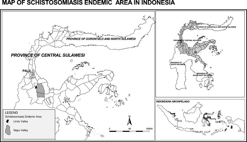 schistosomiasis bali helminti terapija