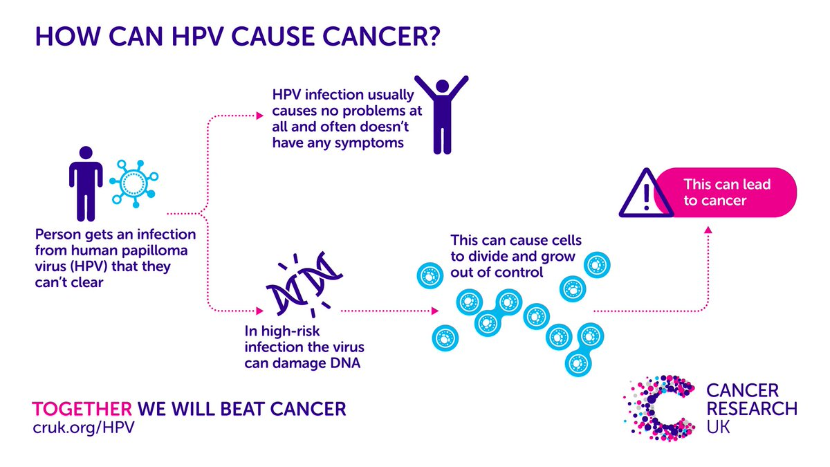 hpv causes what cancer