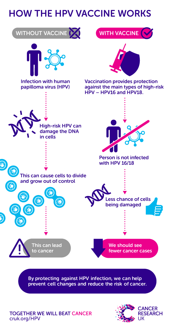 hpv related cancer in males recenzii ale condiloamelor după naștere