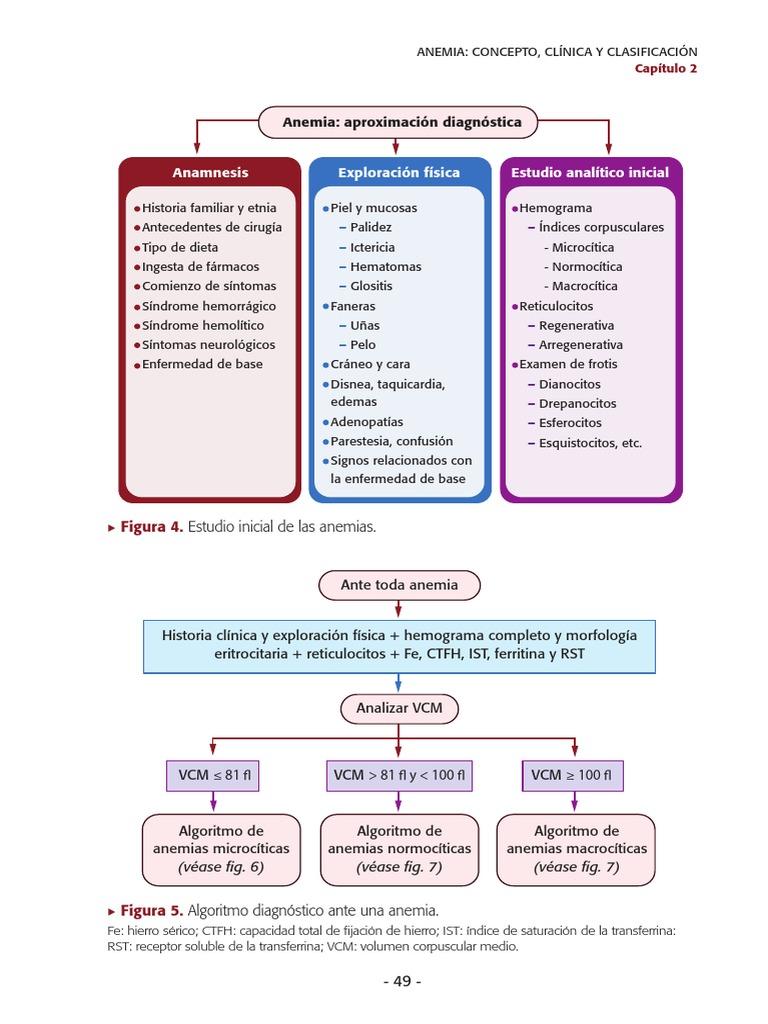 anemie regenerativa