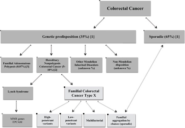 cancere familiale endometrial cancer discharge