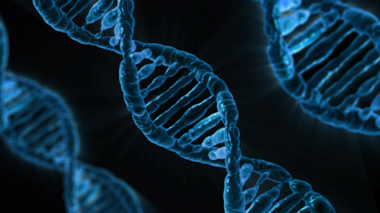 colon cancer genetic link