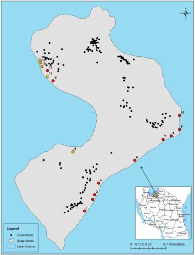 schistosomiasis lake victoria negii cutanate cu negi genitale
