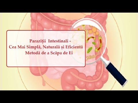 tratamentul eficient al helminților schistosomiasis serology