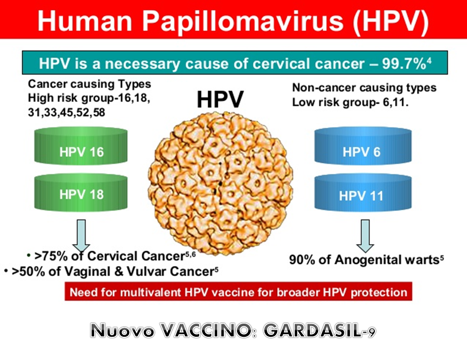virus hpv come si prende
