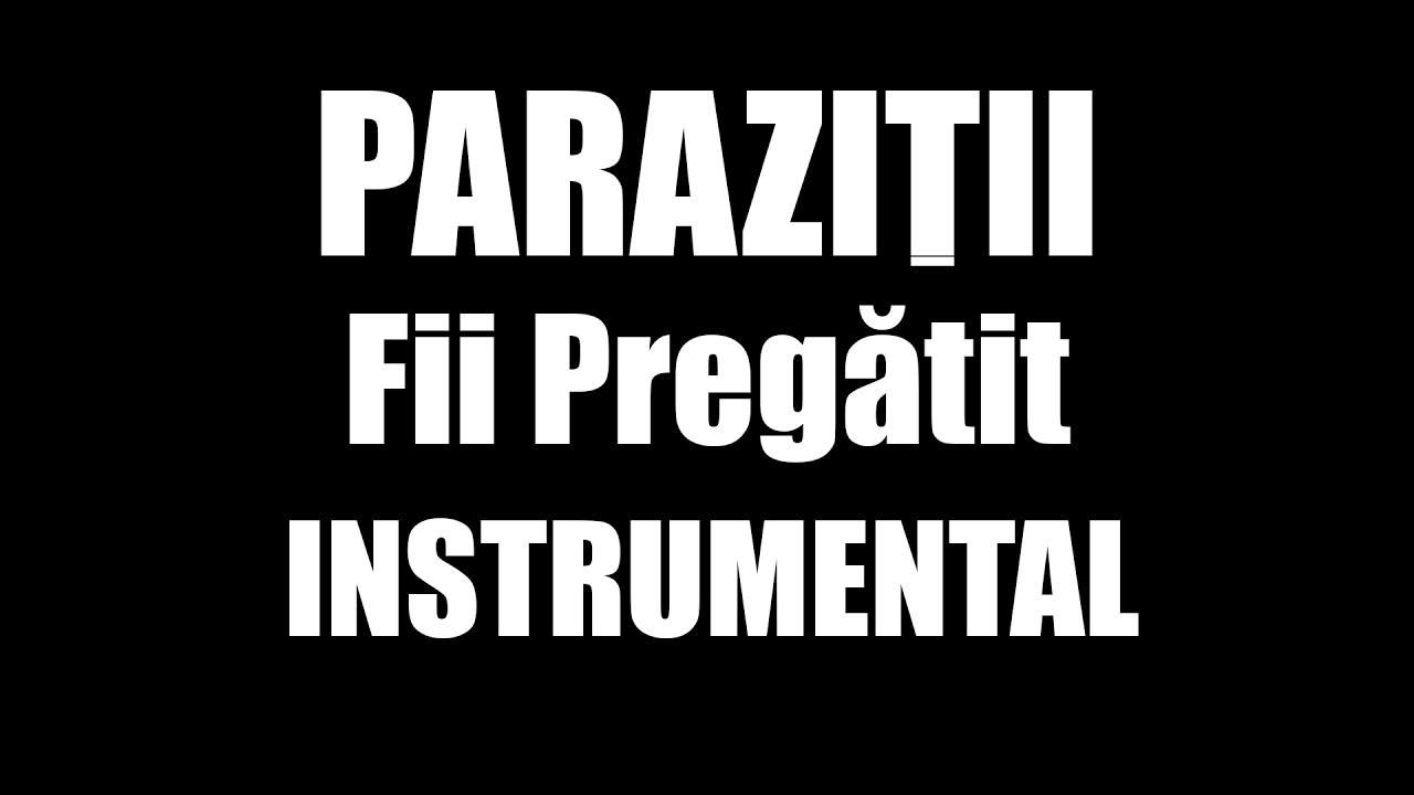 Parazitii - Fii Pregatit (nr) + Versuri | Hip Hop