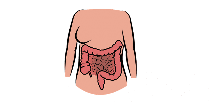terapie cu helmint în boala Crohn este periculos să eliminați papiloamele