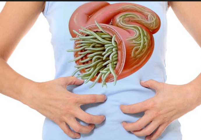 paraziti u crijevima slike can hpv cause jaw cancer