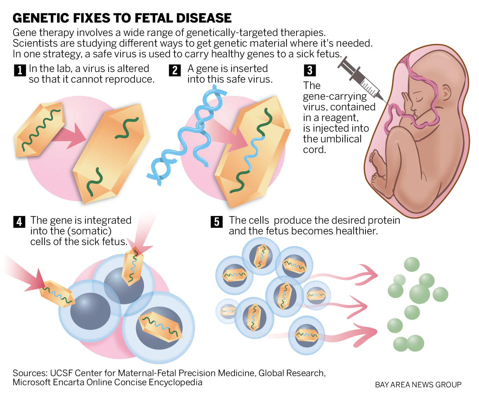 genetic cancer of the womb tratamentul papiloamelor virale