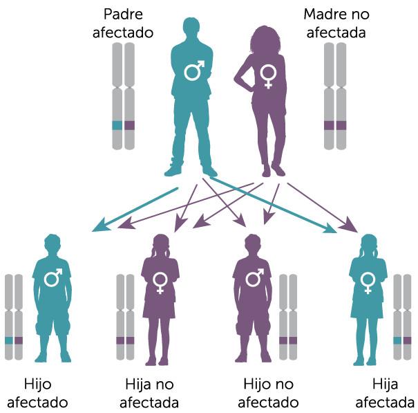 que cancer es hereditario
