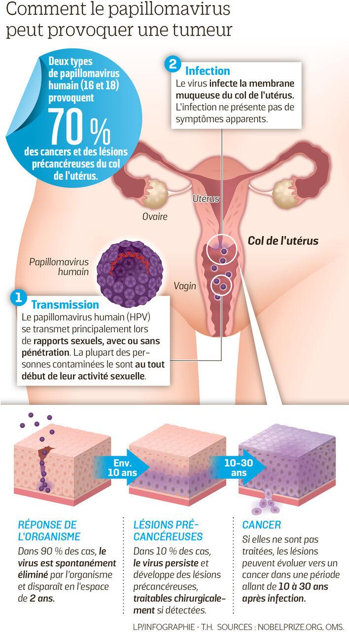 vaccin papilloma virus avis hpv impfung gegner