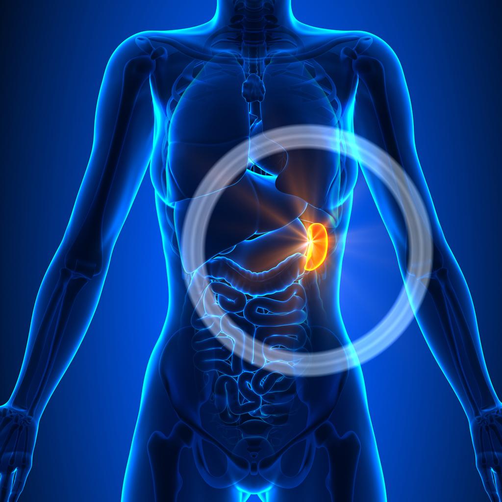 cancer splina simptome