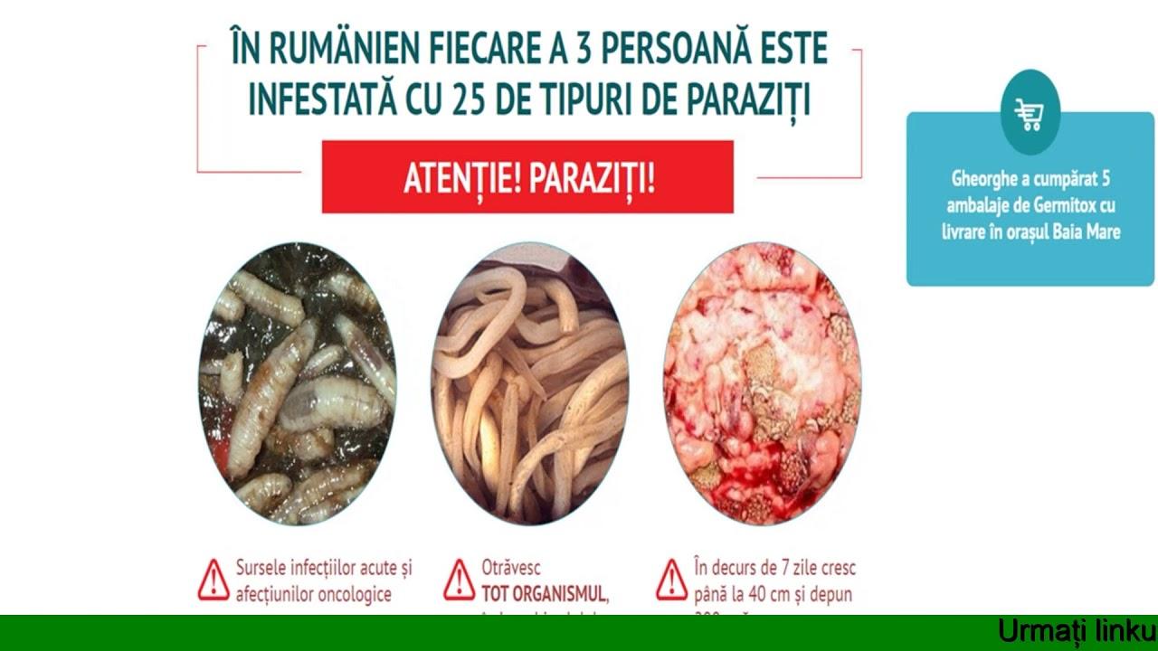 condilom perineal medicamente pentru prevenirea paraziților la om