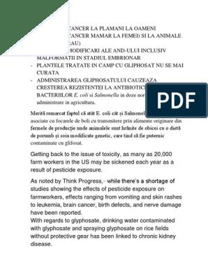 hpv papillomavirus papilloma