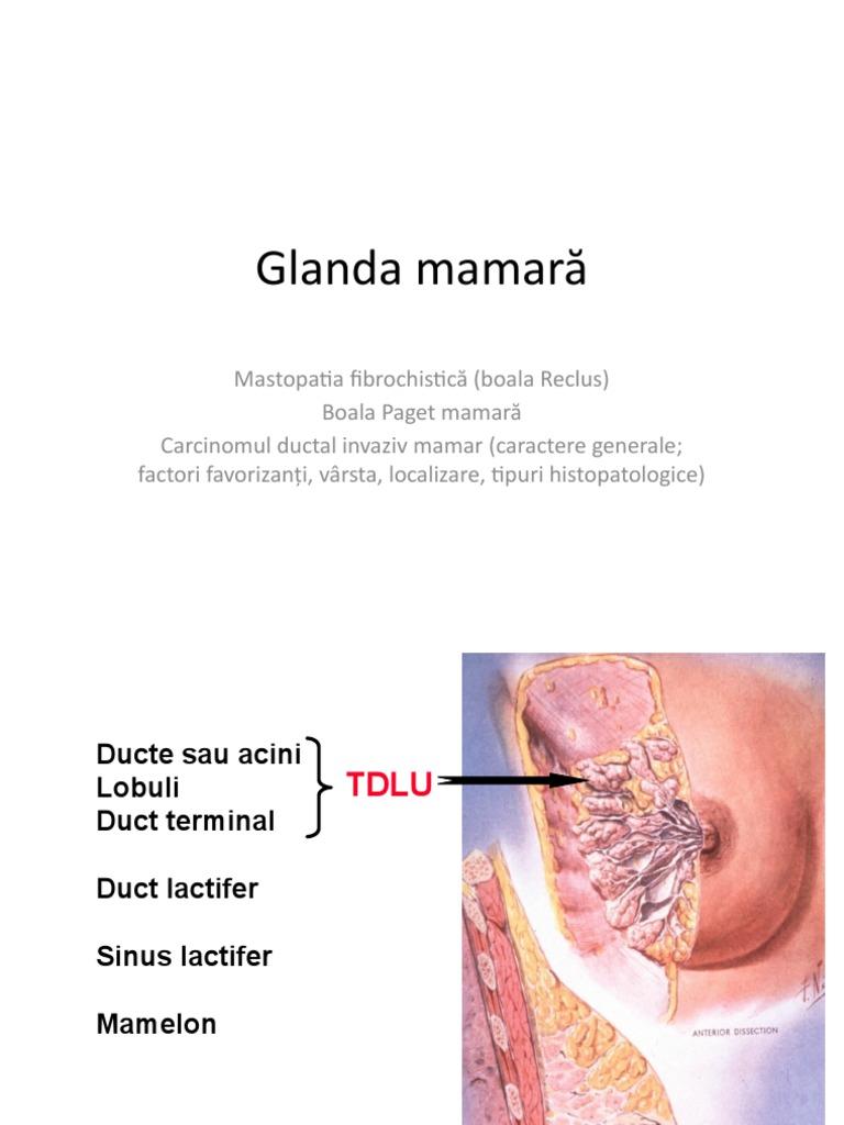condilomul peretelui vaginal îndepărtarea papilomelor din jurul ochilor