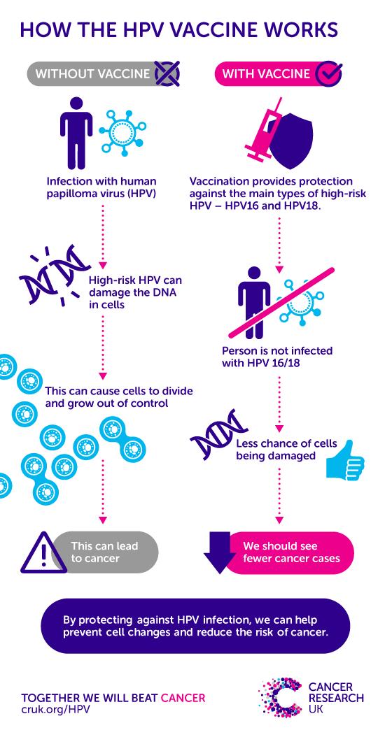 hpv causes cancer in males cum să te tratezi împotriva viermilor