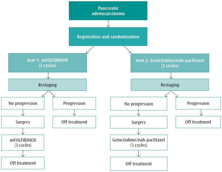 ovarian cancer debulking protocol pentru tratamentul helmintiazei la copii